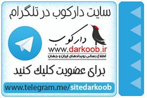 تلگرام دارکوب