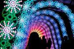 جشنواره چراغ های زمستانی - ژاپن