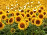 آذر روز، جشن آذرگان - آذر 97