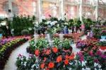 نمایشگاه گل و گیاه و گیاهان دارویی، ادوات باغبانی و ماهی های زینتی و نمایشگاه صنایع دستی و سوغات همدان 99