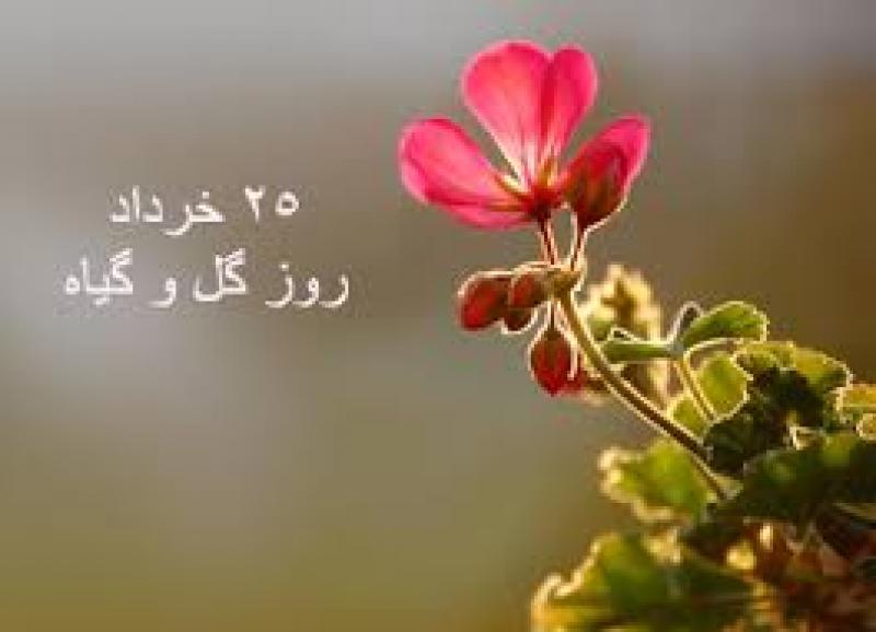 روز گل و گیاه (سال 96)