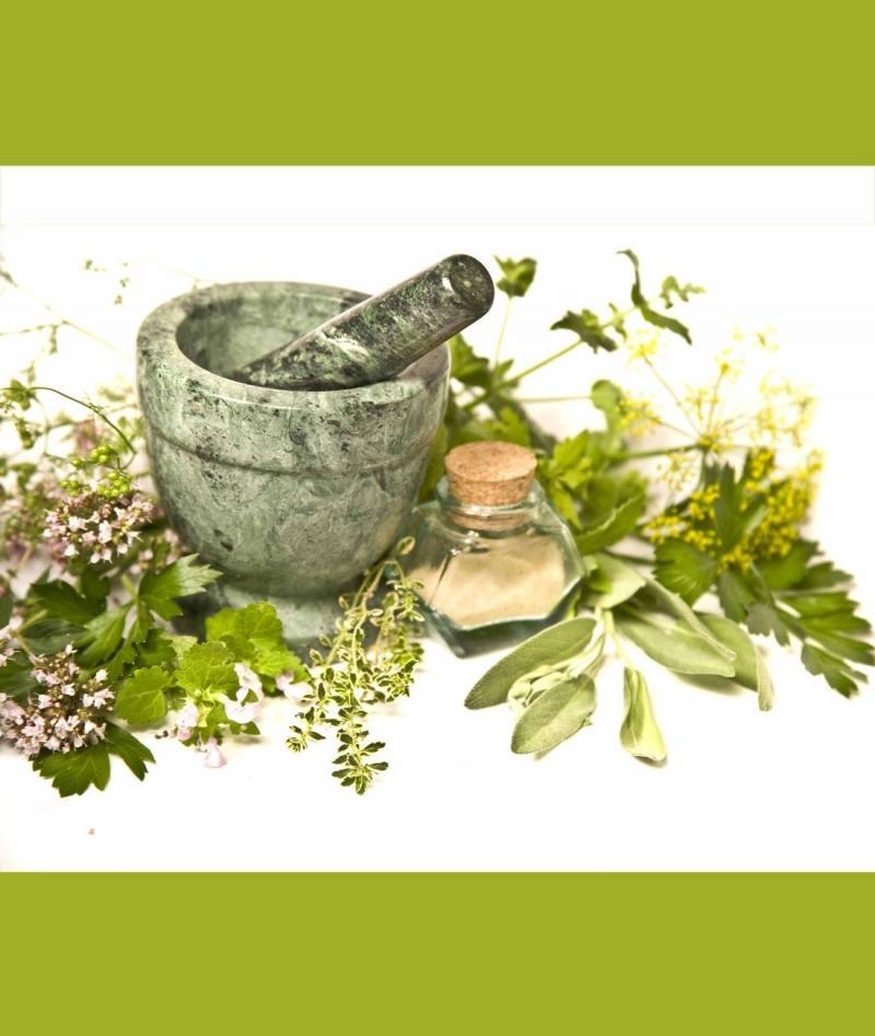اولین نمایشگاه تخصصی گیاهان دارویی ، طب سنتی گلستان - 96