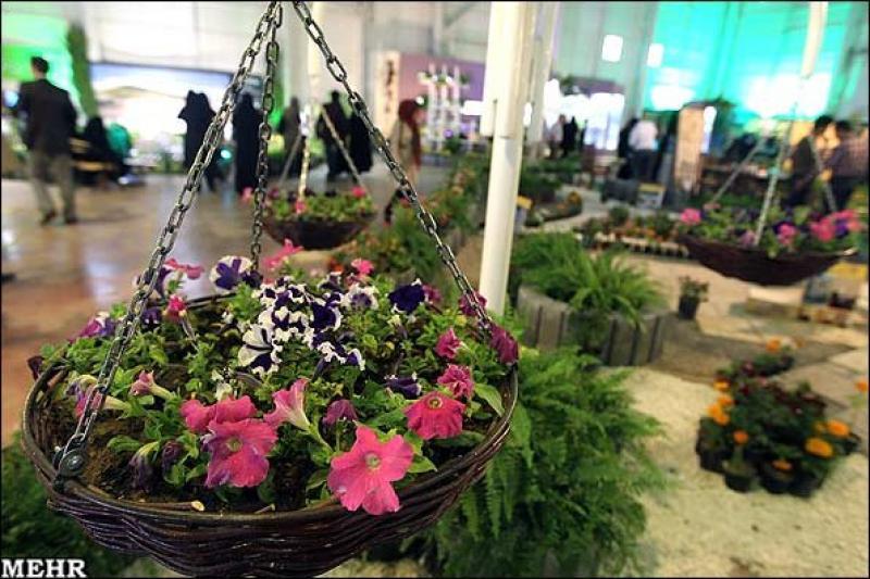 نمایشگاه گل و گیاه، ادوات باغبانی و گلخانه ای ؛ رشت  -۹۶