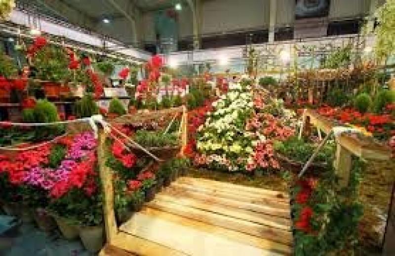 نمایشگاه گل، گیاه، فضای سبز و تجهیزات گلخانه ای و ماهیان زینتی ؛اراک - تیر 98