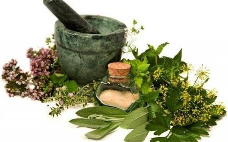 نمایشگاه گیاهان دارویی ؛ میاندوآب  - شهریور و مهر 98