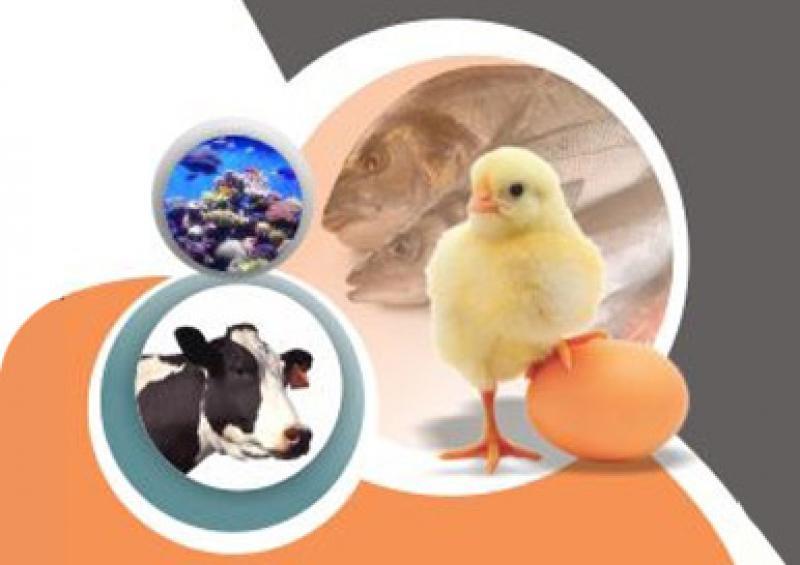 نمایشگاه دام و طیور، کشاورزی و آبزیان؛اراک - شهریور 98