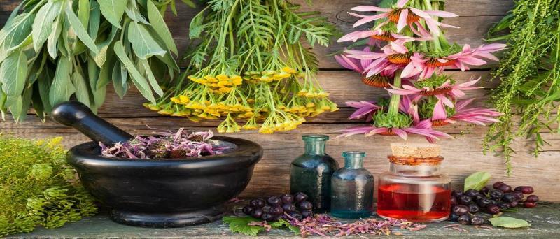 جشنواره گیاهان دارویی و محصولات ارگانیک ؛اراک - مهر 98
