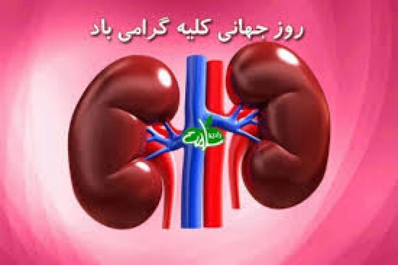 روز جهاني كليه {8 مارس } اسفند 98