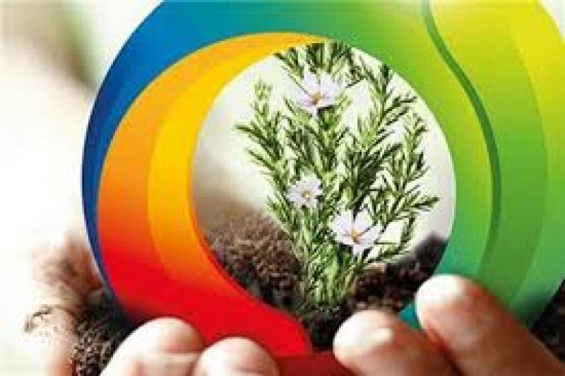 نمایشگاه گل و گیاه، گیاهان دارویی و ادوات باغبانی ؛ رشت - بهمن 98