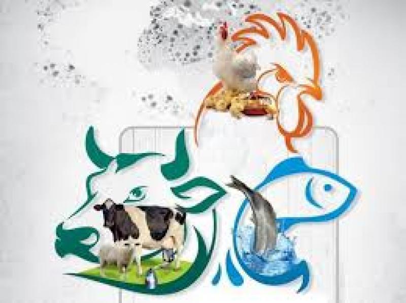 نمایشگاه دام و طیور، شیلات، آبزیان و صنایع وابسته خرم آباد آذر 99