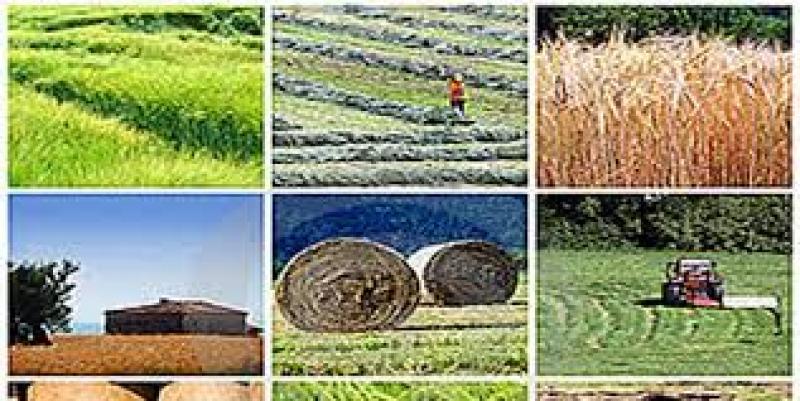 نمایشگاه صنایع و ماشین آلات کشاورزی، نهاده ها، آبیاری، آبرسانی، گل و گیاه، تجهیزات گلخانه ای خرم آباد آذر 99