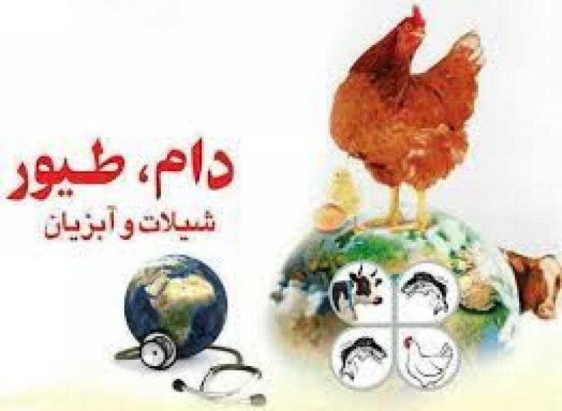 نمایشگاه بین المللی تخصصی صنعت دام و طیور، آبزیان و صنایع وابسته ایران تبریز 1400